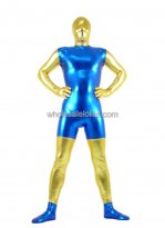 Cool Fashionable Shiny Metalic CatSuit